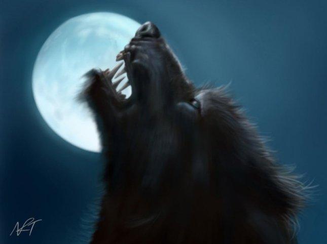 werewolf_by_quarridors-d4qxkqe